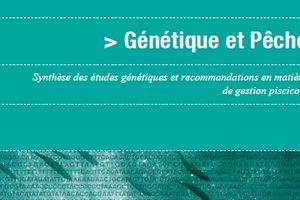 Nouvelle publication de l'OFEV Génétique et pêche