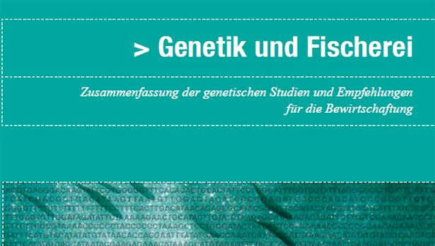 Neue BAFU-Publikation Genetik und Fischerei